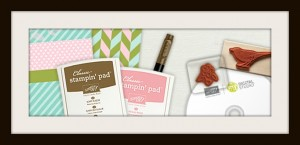 stampin up new demo kit